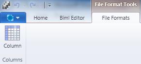 File Format Ribbon