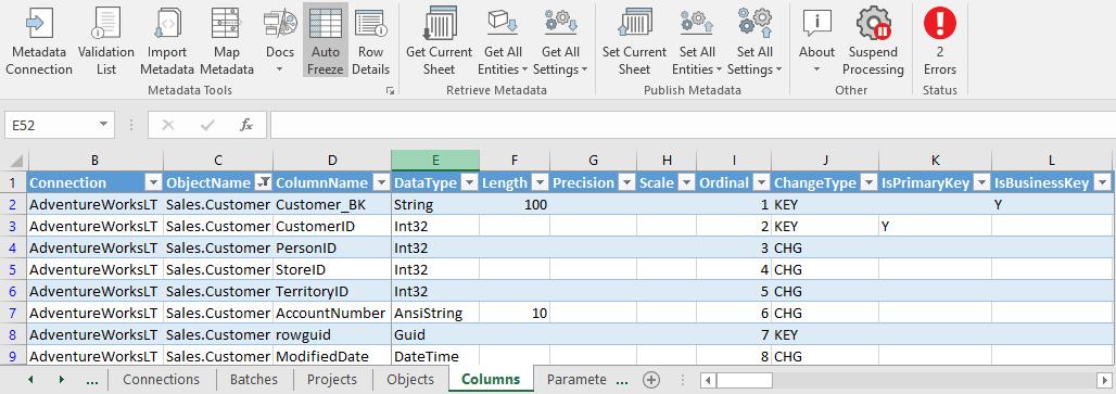 Column Metadata